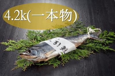 item_02